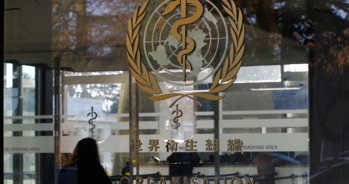 """WHO kembali membela Tiongkok dari tuduhan Presiden Amerika Serikat Donald Trump. Foto: Reuters  Artikel ini telah tayang di JPNN.com dengan judul """"Harap Tenang, Simak Penjelasan WHO soal Flu Babi Tiongkok Ini"""", https://www.jpnn.com/news/harap-tenang-simak-penjelasan-who-soal-flu-babi-tiongkok-ini"""